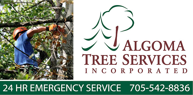Algoma Tree Services